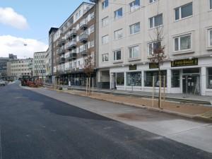 Bäume Friedrich-Verleger-Straße (1)