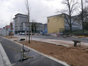 Bäume Friedrich-Verleger-Straße (3)
